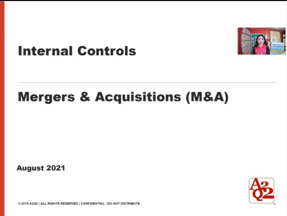 Mergers & Acquisitions: Internal Controls Overview